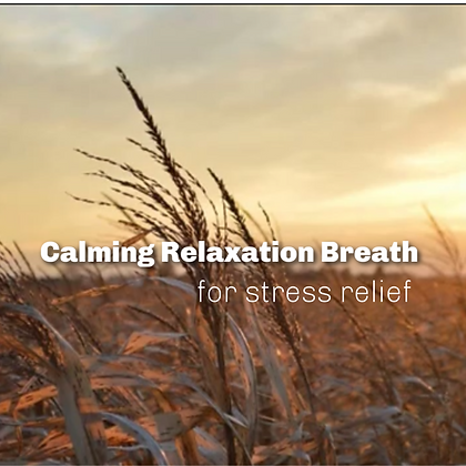 Calming Relaxation Breath for Stress Relief MP3