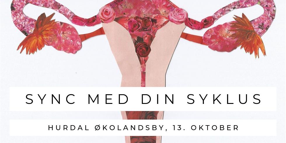 Sync med din syklus - foredrag i Hurdal