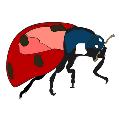 Ladybug large.png