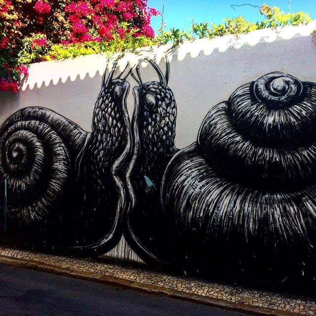 Snails by Belgian artist Roa in Lagos, Portugal