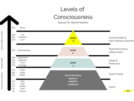 The Map Of Consciousness Explained & How To Level It Up?