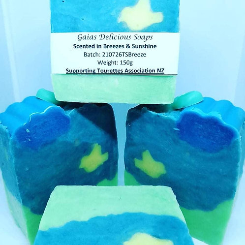 Supporting Tourettes Soap