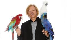 Mark Steiger - Perroquets