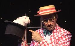 Bunny Show