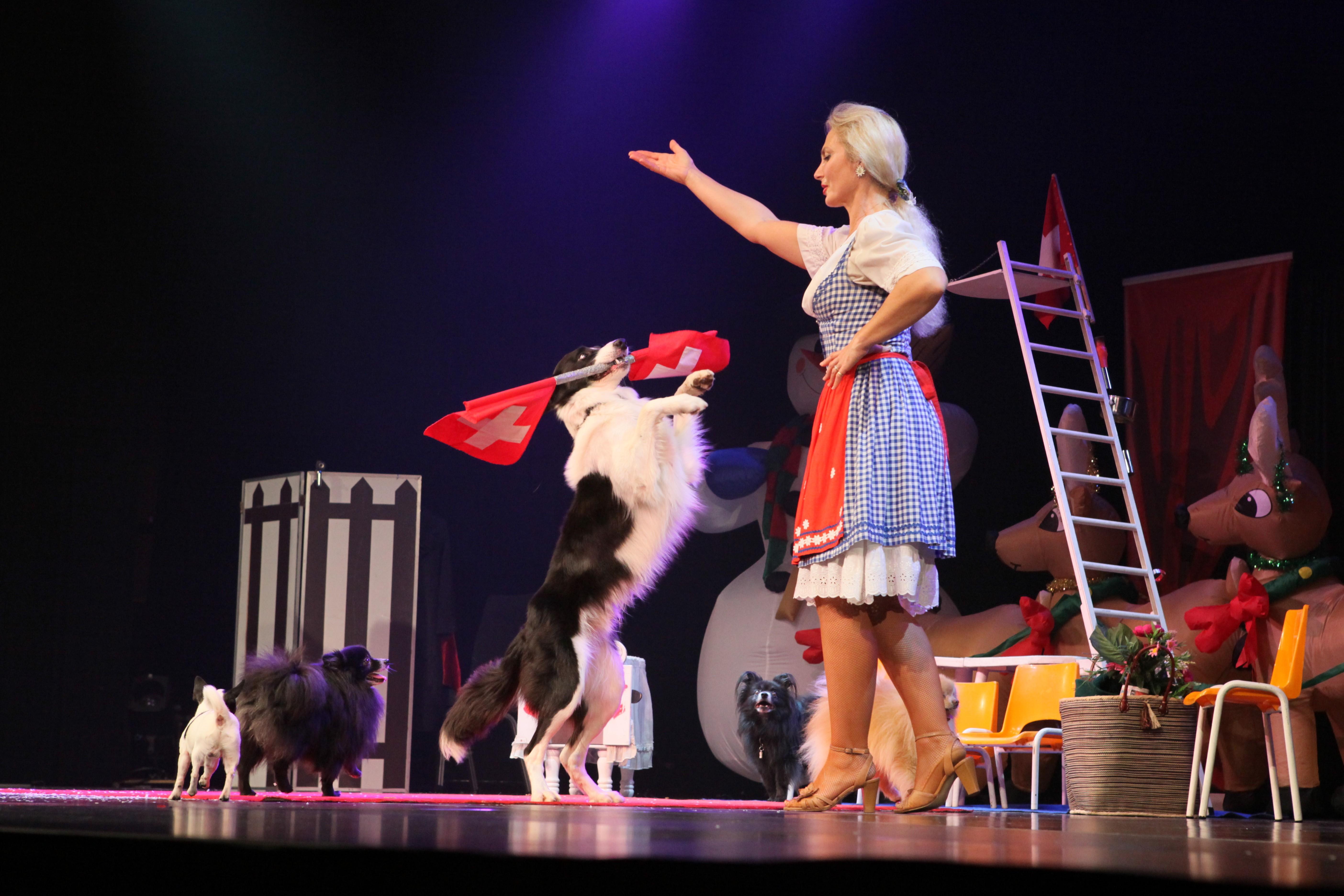 Heïdi et ses chiens savants