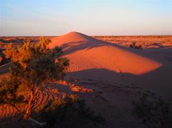 撒哈拉沙漠沙丘