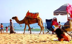 Taghazout Agadir Maroc