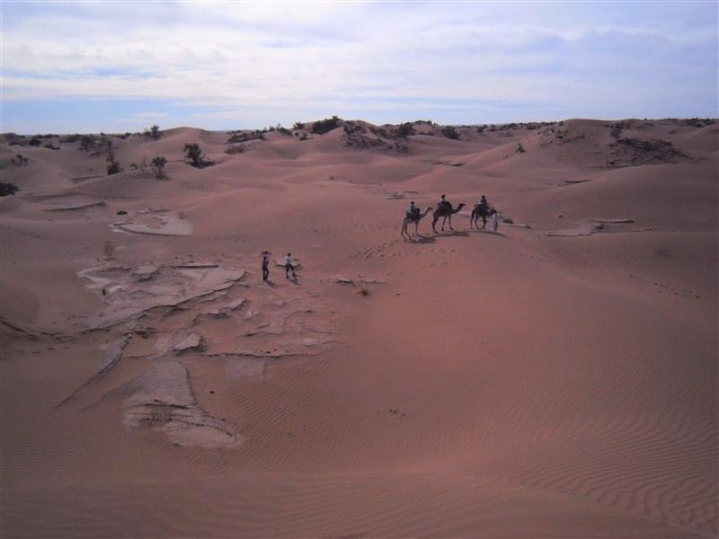 randonnée chameliere maroc