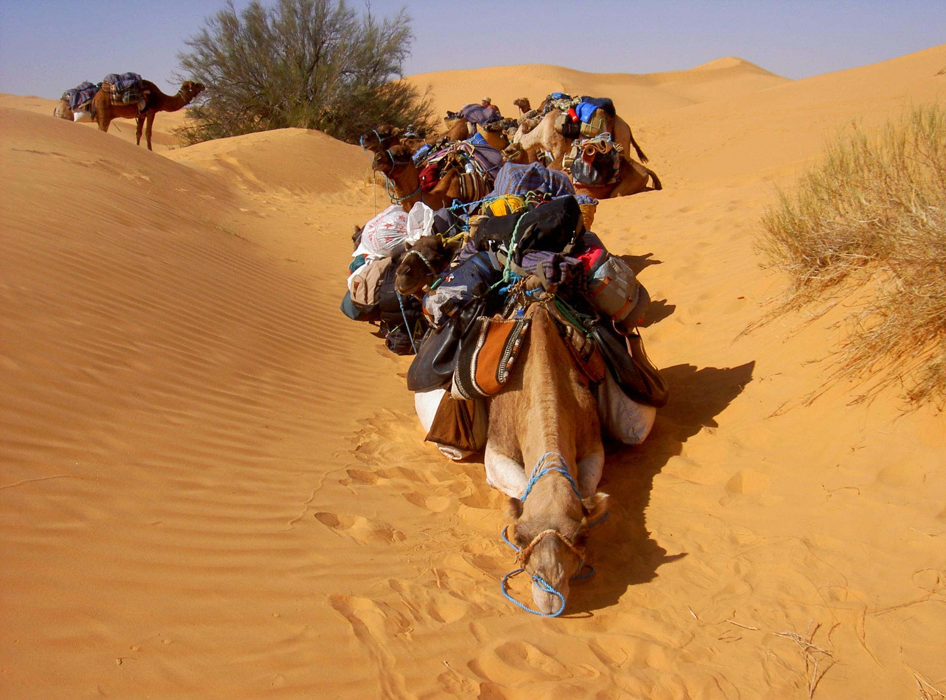 dunes blanches erg Maroc