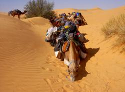 摩洛哥白色沙丘尔格
