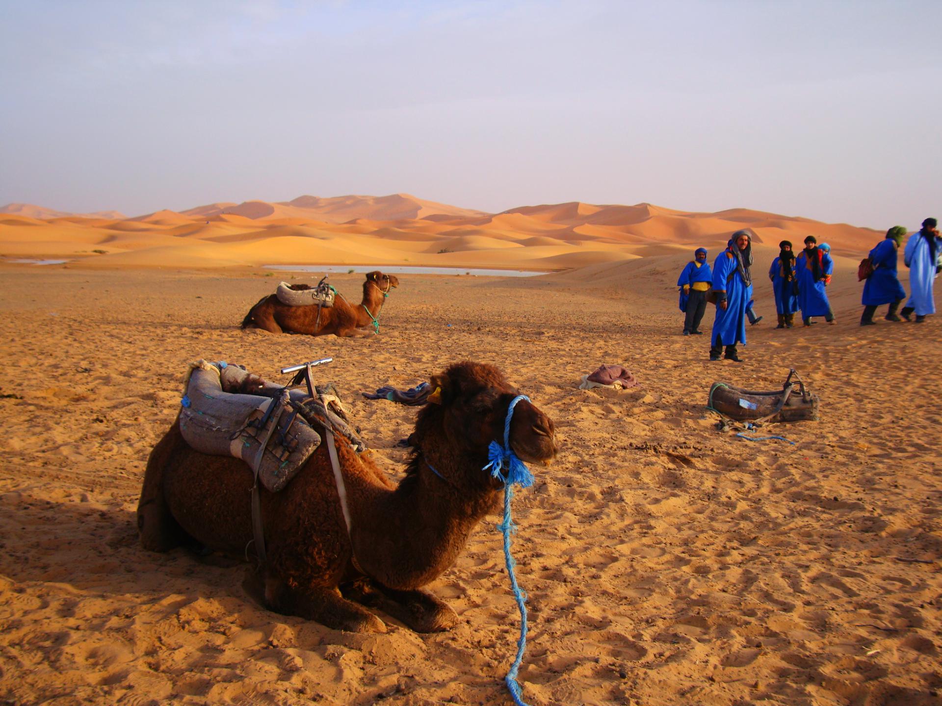 Merzouga désert rouge