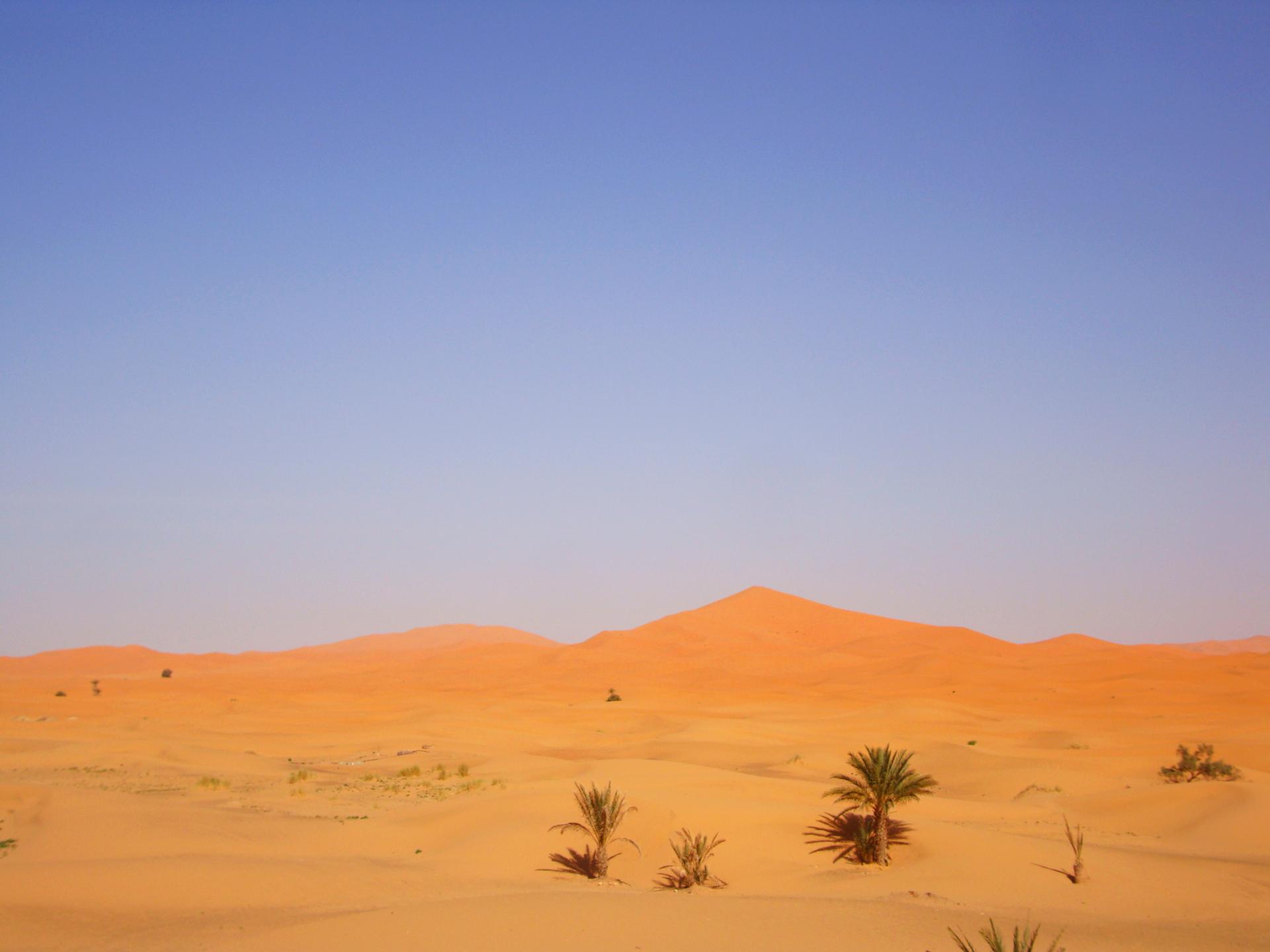 Merzouga désert Maroc