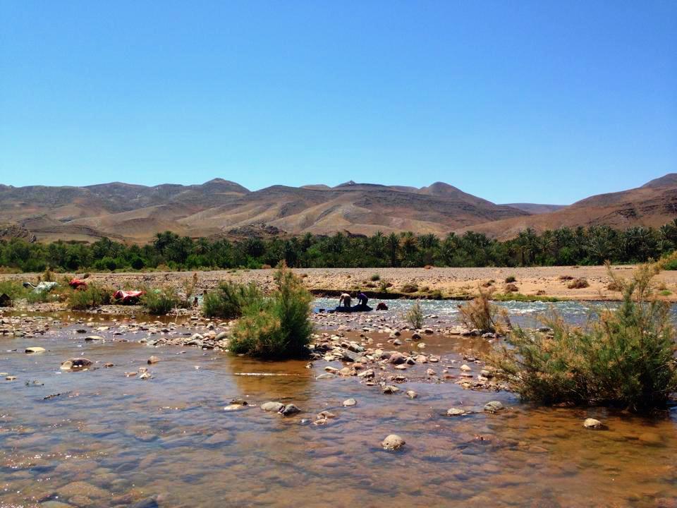 Vallée du Draa Oasis