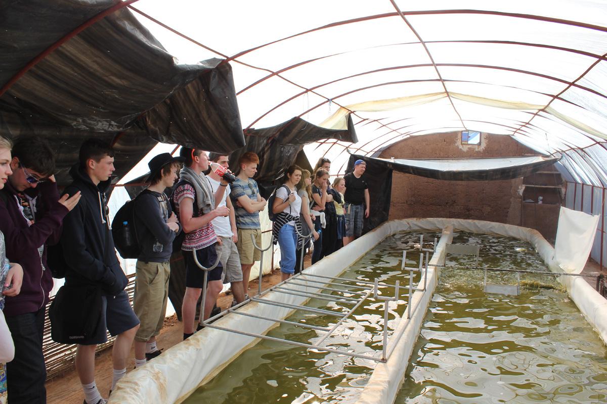 spirulina farm Morocco