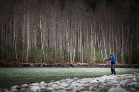 Fly fisherman throws loop of fly line across the river looking for a trout