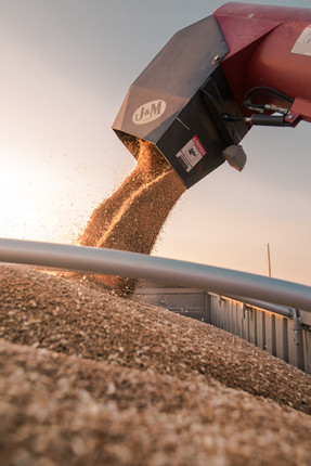 07.23.2017_HARVEST_ROEHM_WHEAT (1005 of