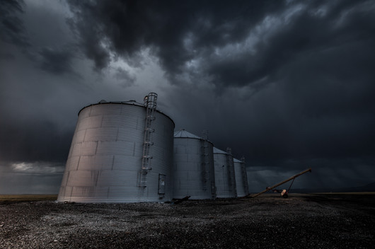four grain bins full of wheat waiting out a storm in Central Montanas golden Triangle