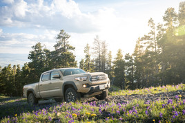 Toyota Tacoma Quicksand Tan TRD Offroad 2018 driving up mountain ridge road wildflowers and sun flair