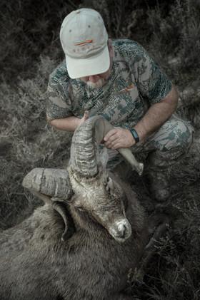Successful bighorn sheep hunter with Missouri breaks bighorn wearing sitka gear