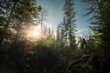 Turkey hunter walking through timber in Idaho wilderness wearing sitka gear subalpine camo and mystery ranch backpack