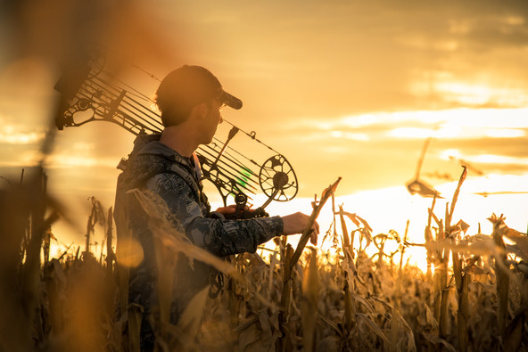 Hunter looking into sunset in corn field with Mathews bow over shoulder