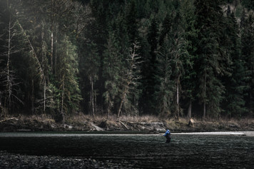 Fly fisherman in ancient forest fishing for massive Bull Trout with a spey rod