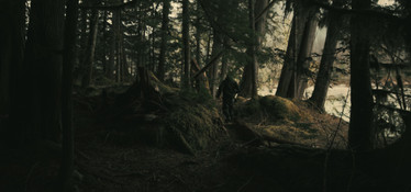 RED Raven 4.5k frame grab walking through the woods while fishing in a remote ancient forest