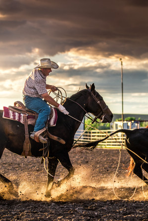 Team roping cowboy in Central Montana durring a practice run