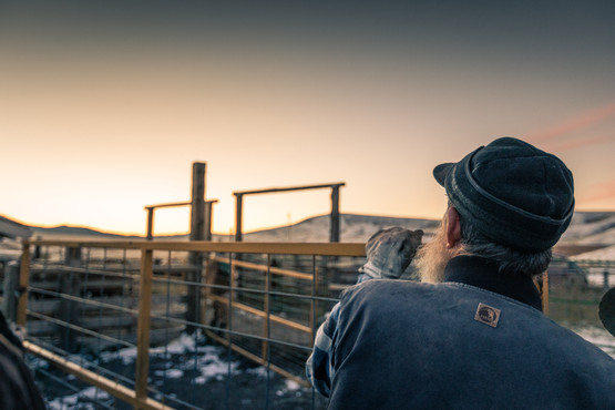 Old rancher with one leg looks off into sunrise on the heaven on earth ranch in Montana wearing a Bern vest