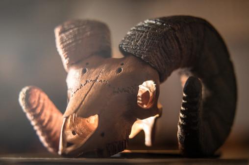 Bighorn sheep carving from Mahogany and Katalox by Jerrin Uecker