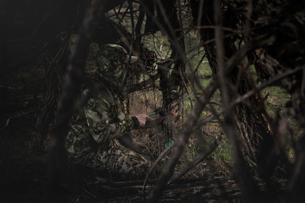 Turkey hunter listening for a goble in thick trees