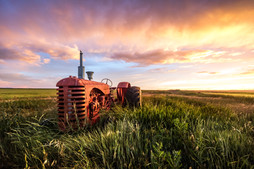 An old tractor sits idle in the tall grasses between wheat fields in Central Montanas Golden Triangle
