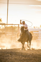 Team roper coming out of the chute with rope loop above his head horse running sun in background