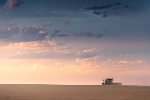Combine making last cut in field during sunset