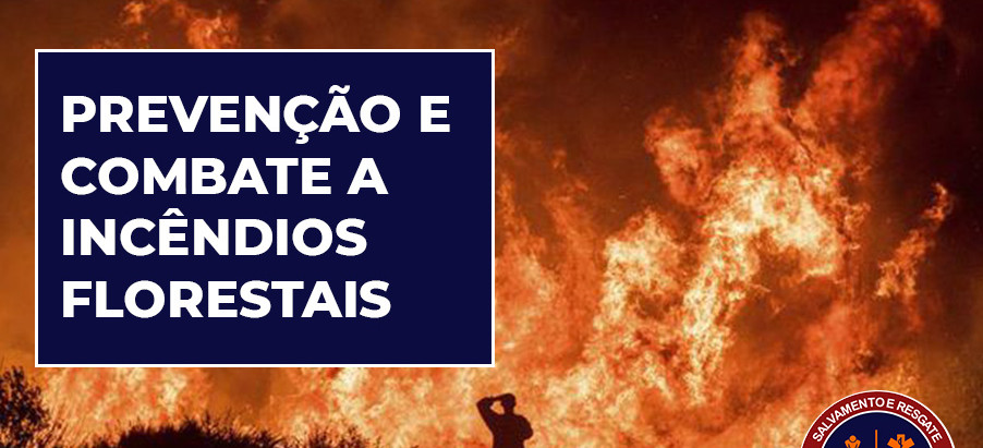 Dicas de prevenção e combate a incêndios florestais
