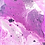 Thumbnail: Violetta