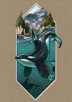 SpiritAnimal Orca