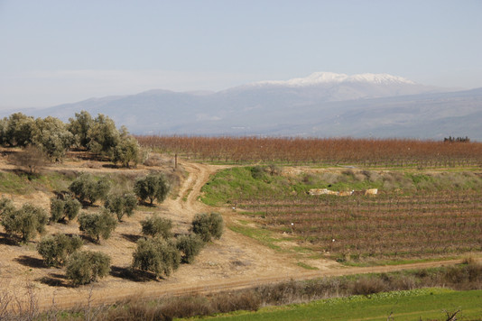 תכנית אב לשטחים פתוחים-הגליל העליון ומבואות חרמון