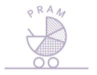 PRAM image.png