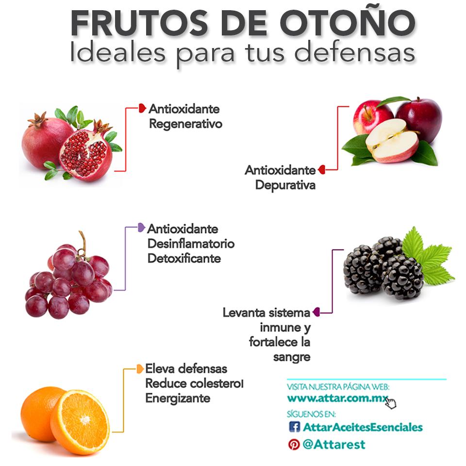 Frutas ideales para el otoño