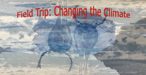 Field Trip: Changing the Climate -- Student work from a university course dedicated to climate