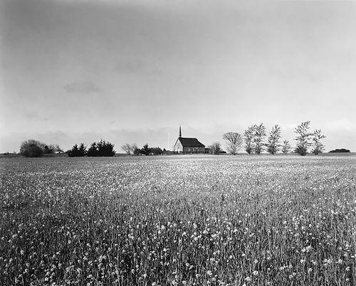 landscape_skarø_5.jpg