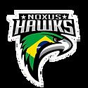 noxus_new_logo_2019_cópia_cópia.png