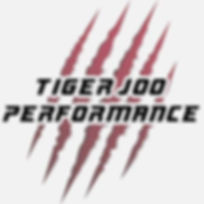 Tiger Joo Performance Logo