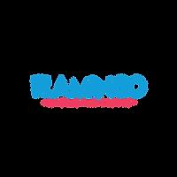 flamingo_logo-01 (1).png