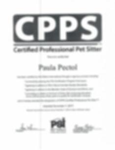 PSI Certificate_1.jpg
