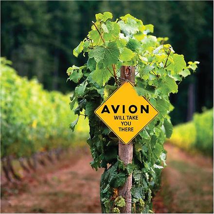 Avion Motorsports Corporate Events Concierge Service