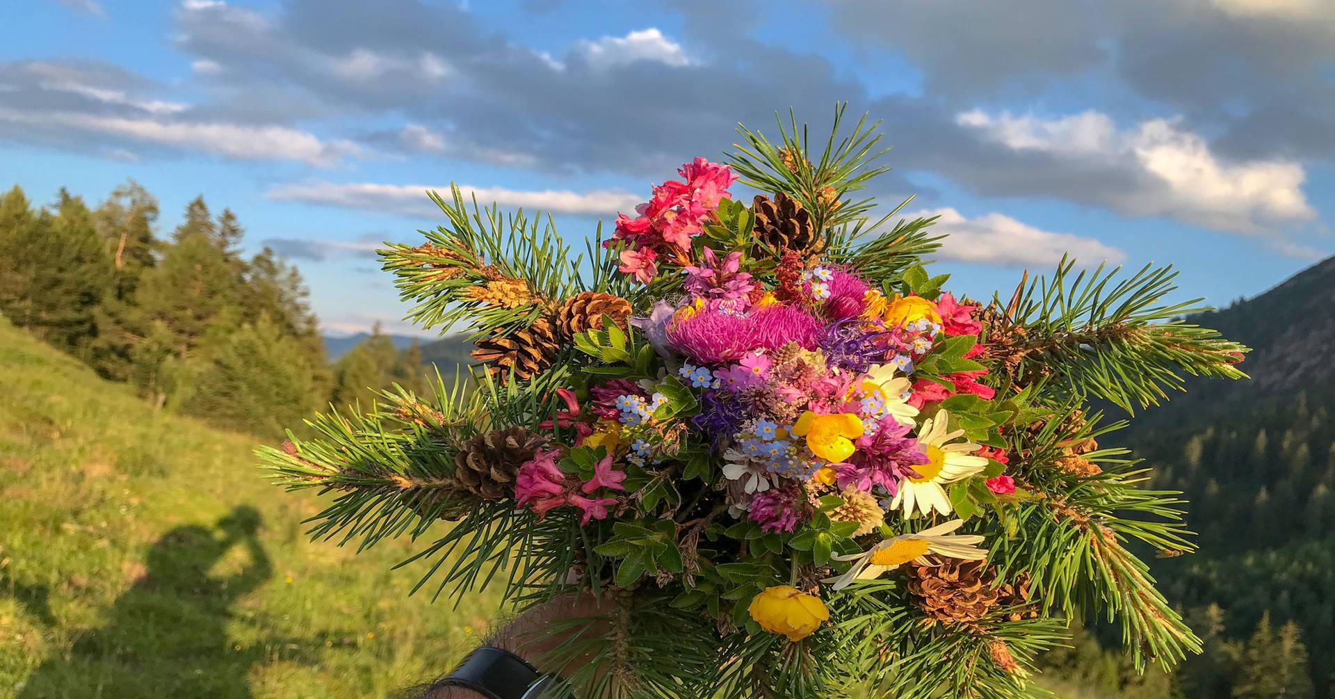 Blumenpracht aus unseren Bergen