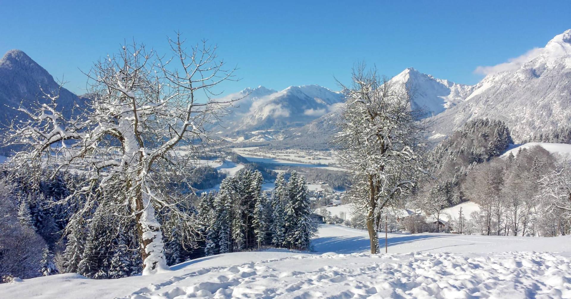 Ihre Aussicht bei uns im Winter
