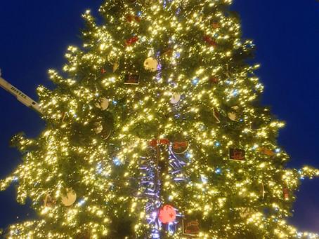【歐洲漫遊-史特拉斯堡】世界第六神聖大教堂 百年聖誕市集  祝福大家聖潔平安 迎向2021嶄新一年!